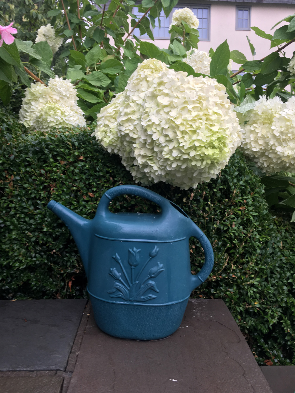 watering_can_09
